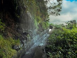 Levada (water channel) of Madeira Island by rezeptiv