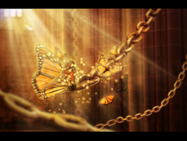 Golden butterflies by msriotte