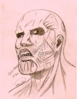 Colossal Titan Sketch by hetaliagirl101