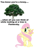 You Know You're a Brony..... by iPandacakes