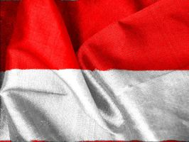 Indonesia's Flag by anggaa