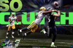 2015 NFC Title Game by YaDig