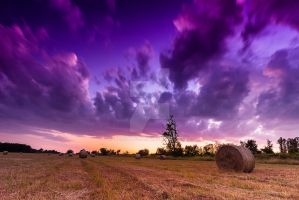 Sunset over the field by JosivBG