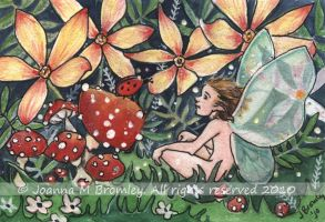 ACEO Orange Daisies and Pixie by JoannaBromley