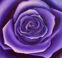 Purple Square Rose by Artman225