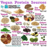 Vegan Sources Of Nutrients 005 by veganshareStock