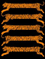 Tiger Stripes by biotwist