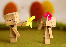 Danbo's First Love by BryPhotography