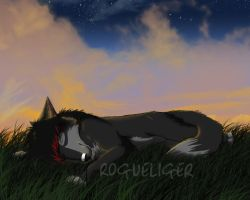 Wolfie Sleeping by RogueLiger