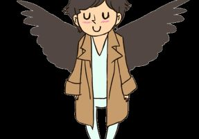 Flap Cas by hollyoakhill