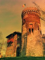 The Tower by horatziu1977