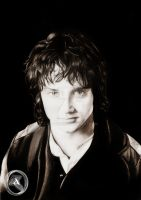 Frodo Baggins by AdorindiL