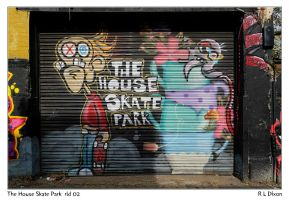 The House Skate Park rld 02 dasm by richardldixon