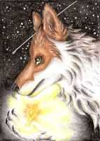 ACEO Zowolf - The fire flower by ElorenLeianor