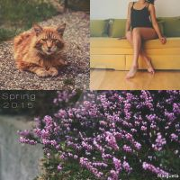 Spring 2015 by margueta