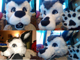 Fursuit Head Done!? by wolfie115