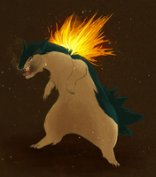 Typhlosion For Pollitio by Jexima
