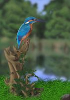 Common Kingfisher (Digital Painting) by Rick-Lilley