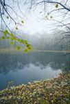 Premade Background 61 by AshenSorrow