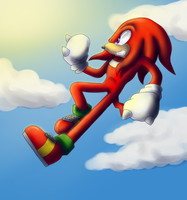 Knuckles by eliacube
