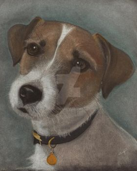 Trixi jack russel by LarnyChi
