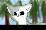 Ivypool by sp4ce-tr4sh