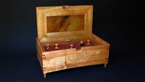N.G. Walnut Nouveau box inside by Dryad-8