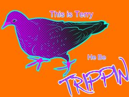 Terry be trippin by iamherecozidraw