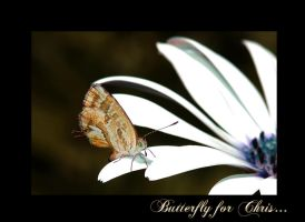 Butterfly for Chris by Nataly1st