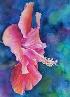 Hibiscus 1 by k8lag