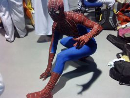 The Amazing Spidey by transformers-fan123