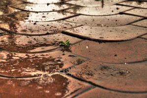 raining _updated_ by i-R-S
