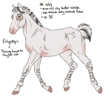 1067 Padro Foal Design for SilentSheWolf by KimboKah