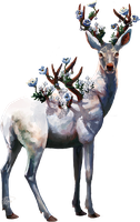Floral stag by Saluhin