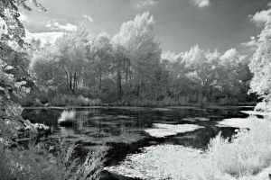 IR Abney House Park Lake 1 by Okavanga