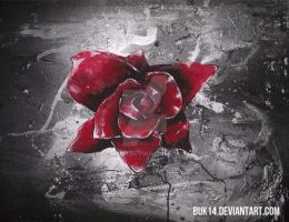 Red Rose by Buk14