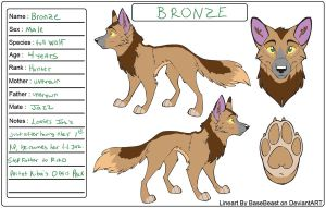 Bronze Ref Sheet by DracKeagan