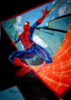Spiderman by mepol
