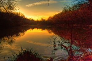 On Golden Pond... by TheBaldingOne