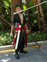 Time Skip Zoro by Synphol