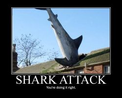 Motivational Shark Attack by Megamothius