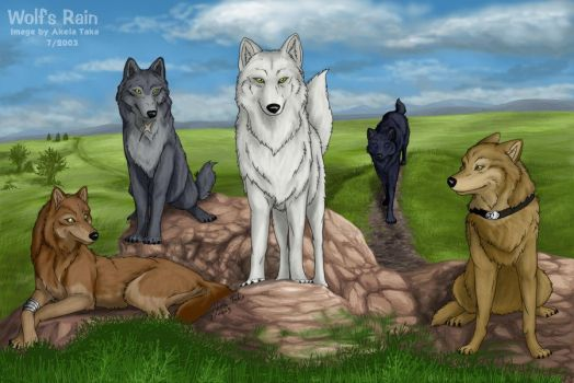 All Five Wolves Together by akelataka