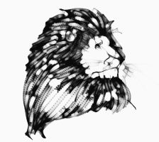 Lion sketch by Clairictures