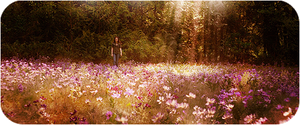 Meadow 3 by GABY-MIX