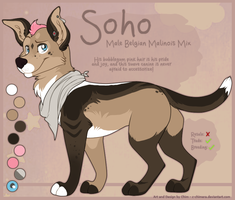 SOLD: Soho the Malinois Mix by c-Chimera