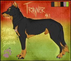 . Trayver - Reference Sheet . by Kasamm