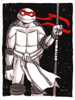 TMNT Don by TessFowler