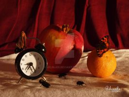 Still Life - Fruits, Clock And Insects by jelinjer