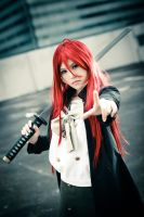 Shakugan no Shana I by baby-ruby
