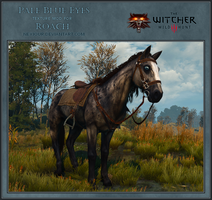 Pale Blue Eyes Texture MOD for Roach by Neyjour